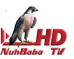 NuhBaba Tv